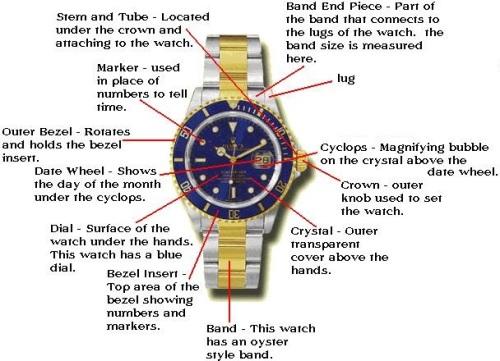 rolex watch diagram